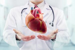Kardiovaskulární komorbidita a rizika léčby ARTA