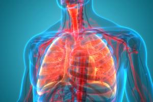 Informace o změnách úhrady účinné látky pembrolizumab